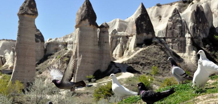 Kapadokya 2020 yılında 992 bin 620 turist ağırladı