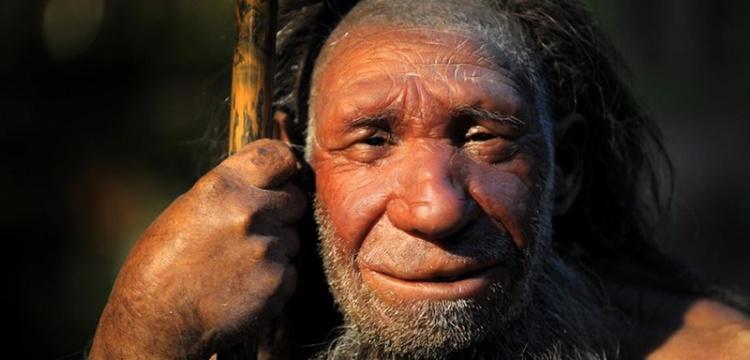 Neanderthal DNA'larında Homo Sapiens geni bulunamadı