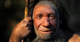 Neanderthal DNAlarında Homo Sapiens geni bulunamadı