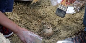 Edirnede roma dönemine ait iskelet bulundu