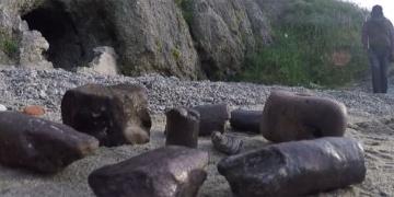 Çanakkalede milyon yıllık balina ve bizon fosili bulundu