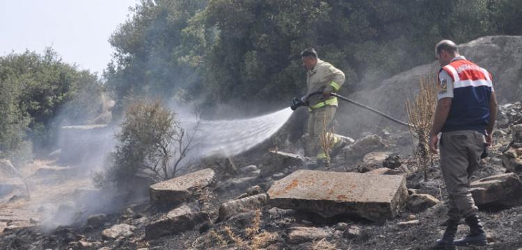 Assos Antik Kenti'nin yakınında yangın çıktı