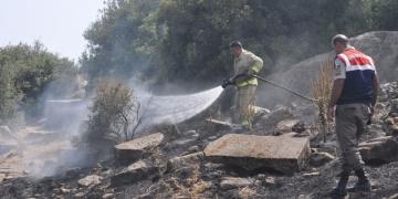 Assos Antik Kentinin yakınında yangın çıktı