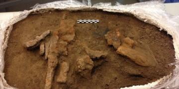 Bin yıllık Viking alet kutusu bulundu