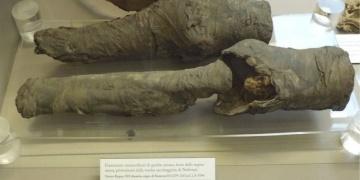 Bu bacaklar Kraliçe Nefertarinin olmalı!