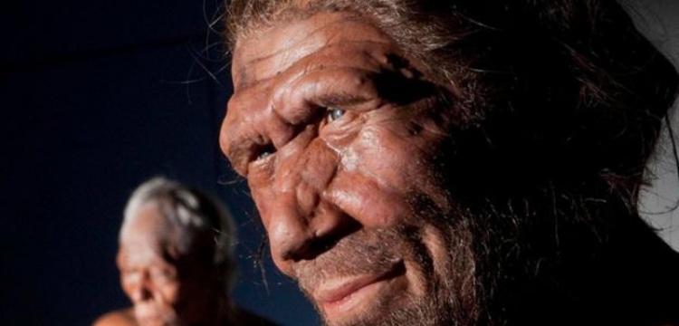 Neandertaller dalış yapabilecek kadar iyi yüzme biliyordu