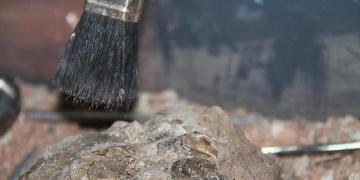 Mahir Polat arkeologların istihdam sorununu TBMMye taşıdı