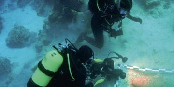 Neolitik dönem denizciliği, TINA Denizcilik Arkeolojisi Dergisinde