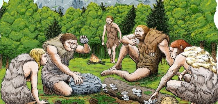 Neandertaller ağrı kesici kullanmış