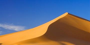 Sahra çölü bir zamanlar ormanlıkmış!