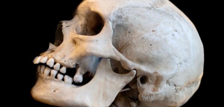 İspanya'da 10 bin yıllık yamyamlık izi