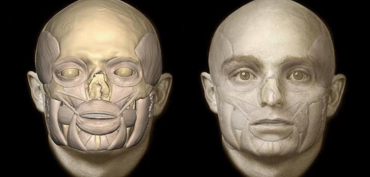Tios'ta ölen Bizanslı Komutanın muhtemel yüzü