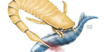 430 milyon yıllık deniz akrepleri