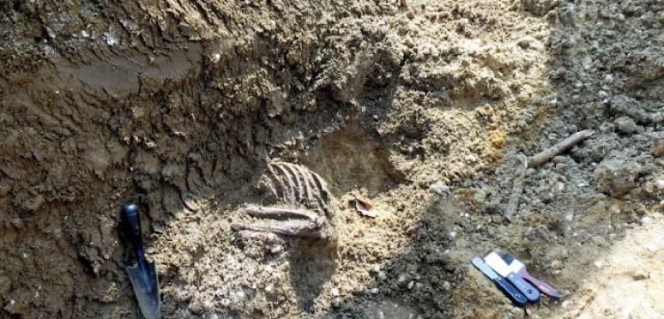Malezya'da 5000 yıllık iskelet sevinci