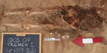 Mısırda olağan dışı iki iskelette hadımlık şüphesi