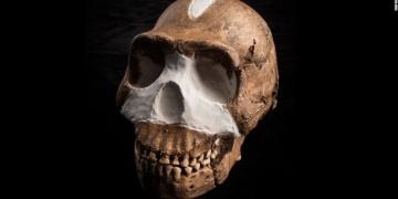 Homo Naledinin yaşı kafa karıştırdı!