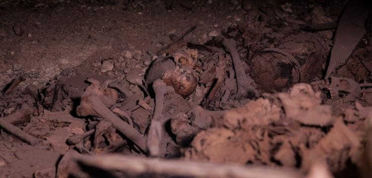 Mısır'da bulunan yeni mumya mezarlığı tanıtıldı