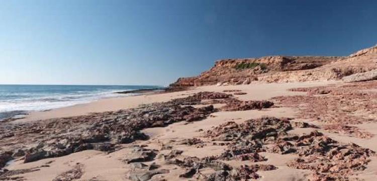 Avustralya'nın ilk yerleşimcileri sahilde yaşamış