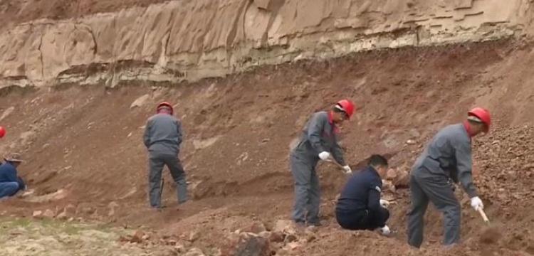 Çin'de dinozorlar için arkeoloji kazısı