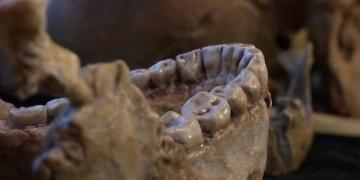 300 Bin yıllık Homo Sapiens nasıl besleniyordu?