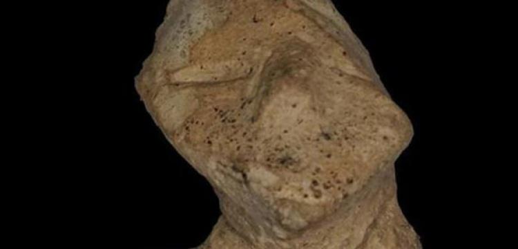 Arkeolog tarlada yürürken 7 Bin yıllık figür buldu