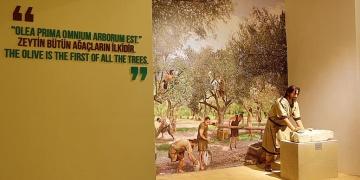 Gaziantep Arkeoloji Müzesi Ziyarete Açıldı