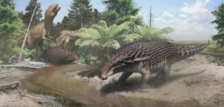 Yürüyen tank Nodosaur'un zırhı onu korumaya yetmiyordu