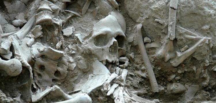 Gökçeada'daki arkeoloji kazısında gizemli mezar çukuru bulundu