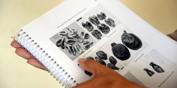 Komana Ortaçağ Yerleşimi kitabı yayınlandı