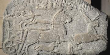 Fransadan Kralın Geyik Avının Türkiyeye iadesi istenecek