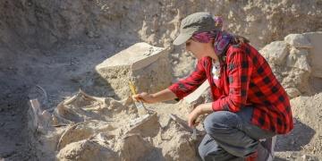 Vanda Urartu döneminden kalma at iskeleti bulundu