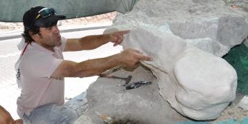 Kapadokyada üç toynaklı at fosili bulundu
