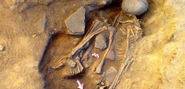 Eskişehir'de 7.500 yaşında bir delikanlı iskeleti bulundu