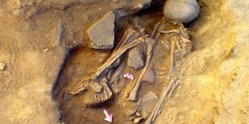 Eskişehirde 7.500 yaşında bir delikanlı iskeleti bulundu