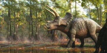 İnşaat kazısında 66 milyon yıllık dinozor fosili bulundu