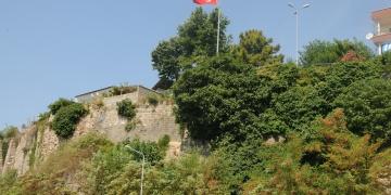 Amasra Kalesinin tehdit eden ağaç kökleri temizleniyor