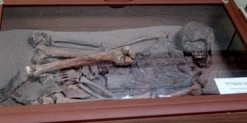 Arkeoloji Müzesinde Çatalhöyük isketlerine ilgi yoğun