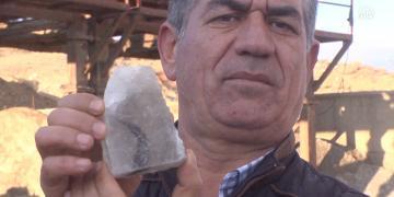 Kırşehirde kaya tuzundan 7 bin yıllık bitki fosili çıktı