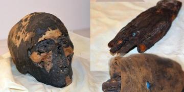 ABDde yakalanan 3 mumya parçası Mısıra iade edilecek
