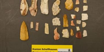 Sökülen ağacın altından 12 bin yıllık aletler çıktı