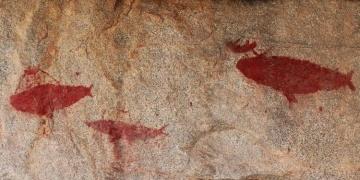 Çöl ortasında 1500 yıllık balina avı resimleri bulundu