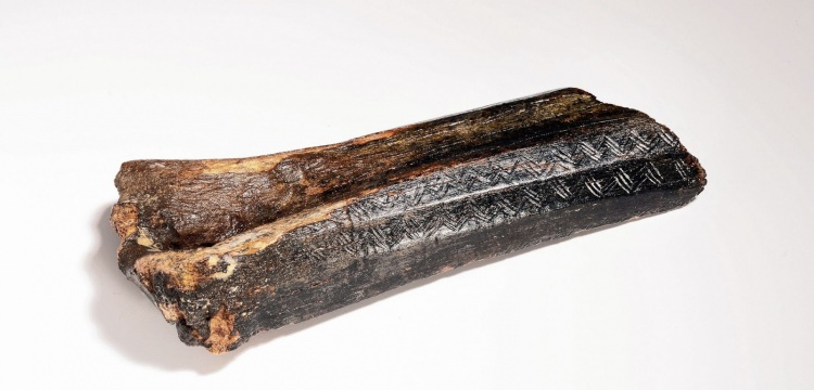Kuzey Buz Denizinden çıkan 13 bin yıllık arkeolojik kalıntılar