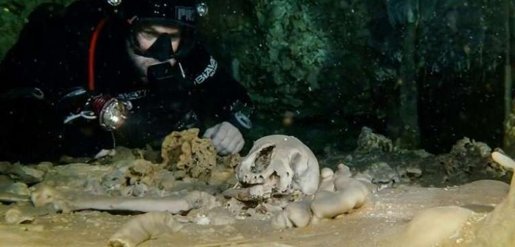 Meksika'da su altı mağarasında Maya kalıntıları keşfedildi