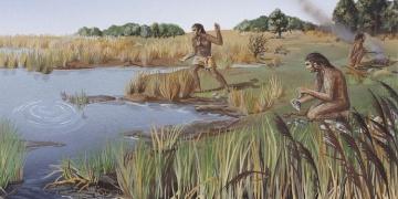 Homo erectus dilli bir insansı tür müydü?