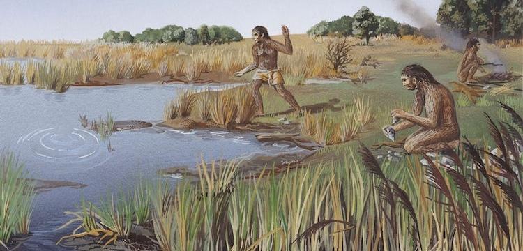 İnsanımsı tür Homo Erectus bilinenden çok daha uzun süre yaşamış olabilir
