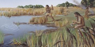Homo erectusun en tembel insansı tür olduğu anlaşıldı