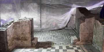 Roma metrosundaki arkeoloji kazısında saray yavrusu bulundu