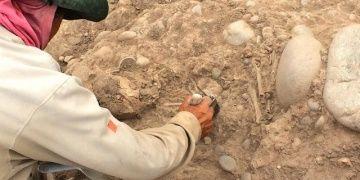 Peruda İnkalara ait mezarlık ve iskeletler bulundu