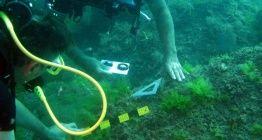 Sinop su altı arkeolojik eserlerini dünyaya tanıtacak
