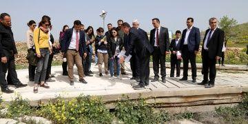 Göbeklitepede yol iddiaları için vicdani karar: Turizme feda olsun